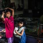Girl Dolls Bandung Indonesia Photo Ooaworld
