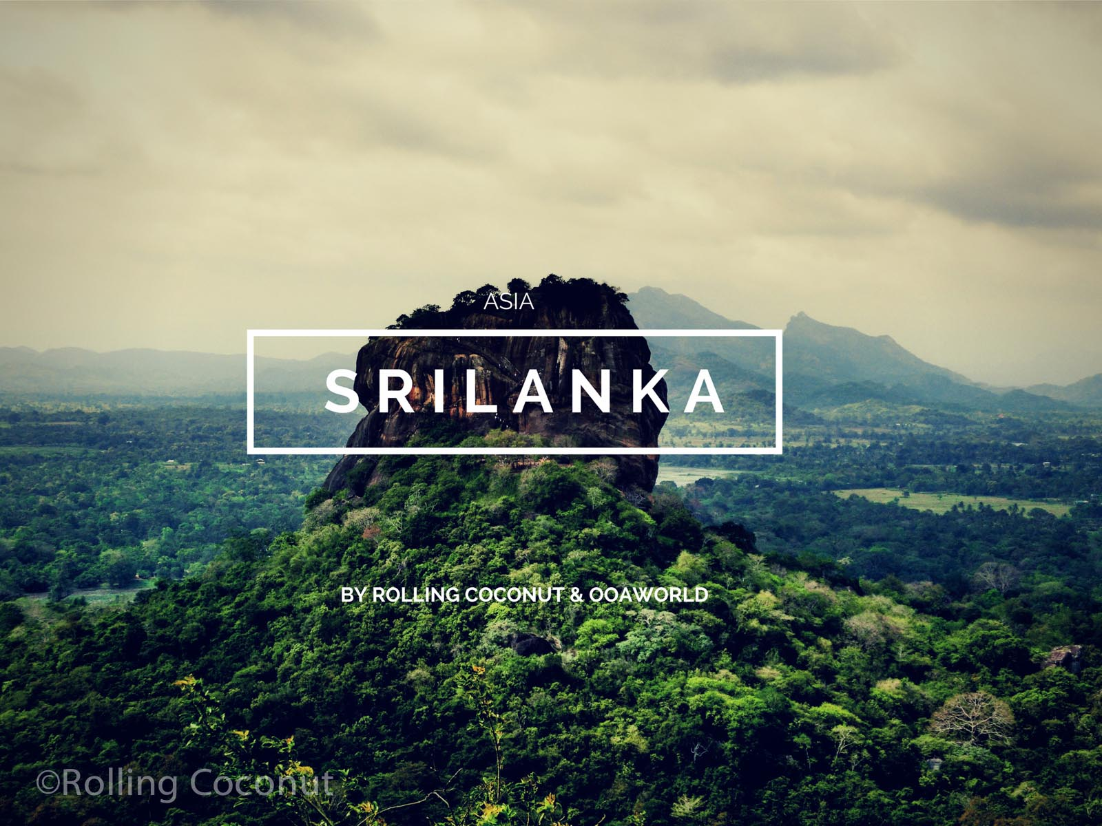 Sri Lanka Travel Ooaworld Rolling Coconut Photo Ooaworld