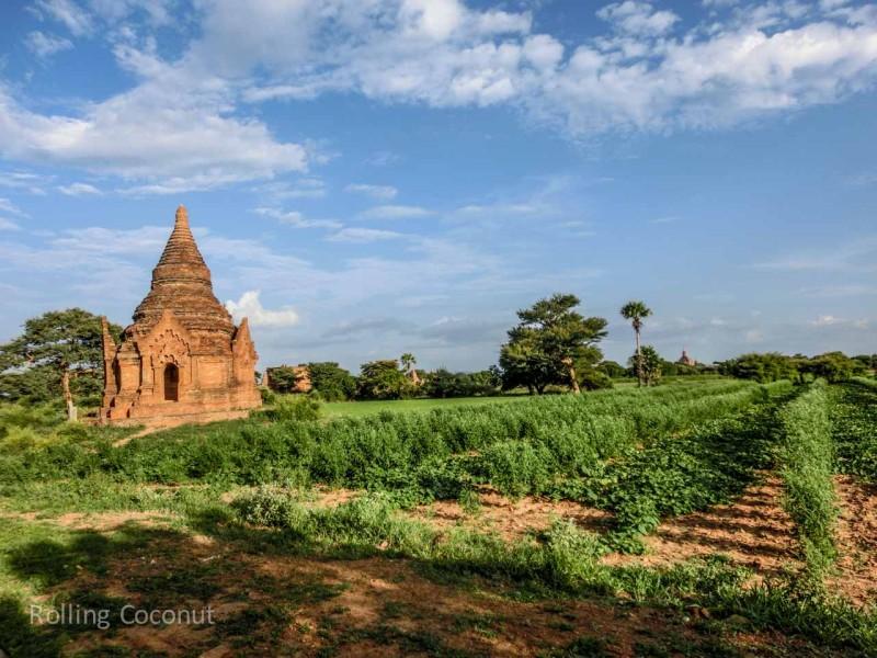 Stupa in Field Bagan Myanmar Ooaworld Rolling Coconut Photo Ooaworld