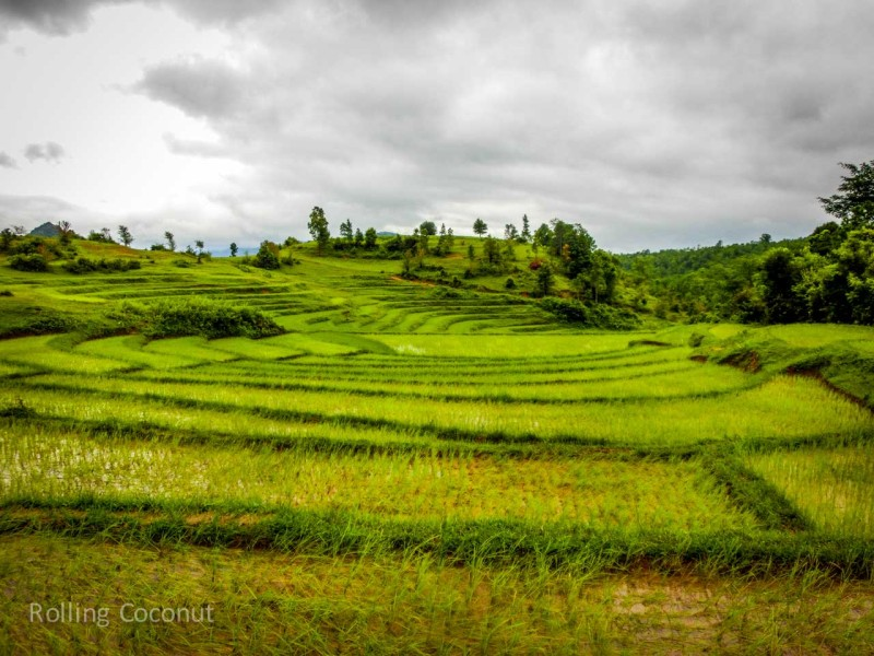 Kalaw Inle Lake Trek Myanmar Rice Fields Landscape Photo Ooaworld