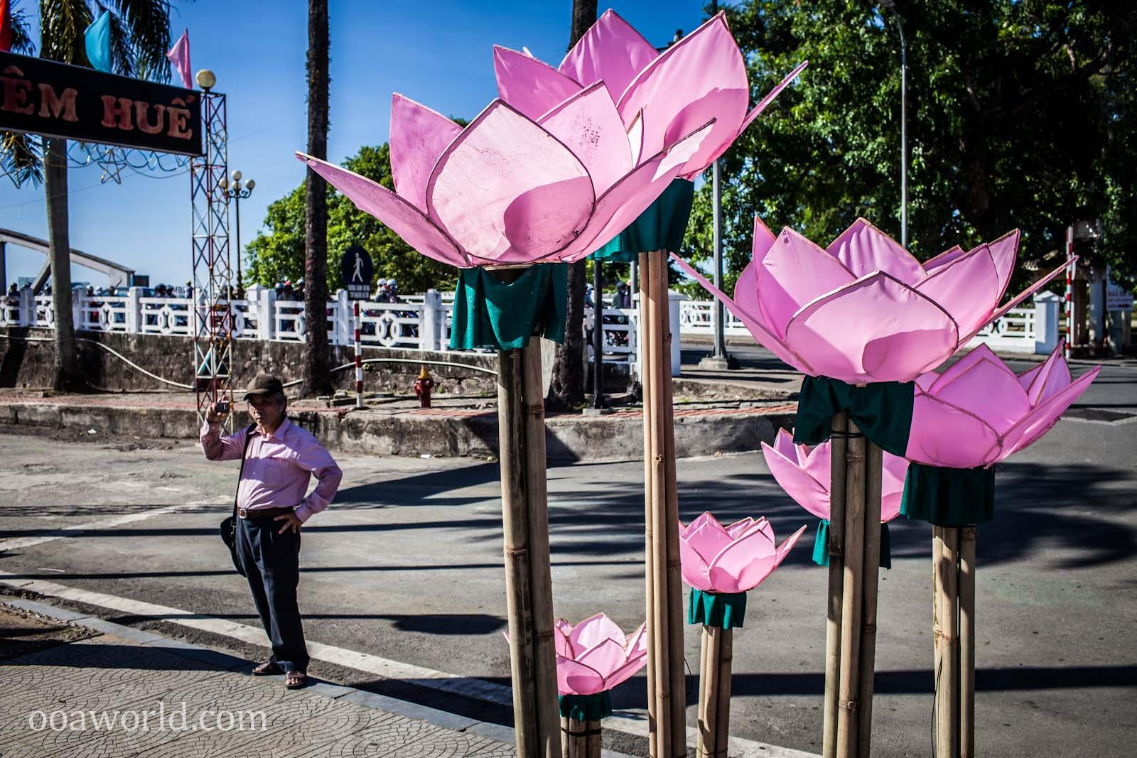 Pink Lotus Hue Vietnam Photos Ooaworld