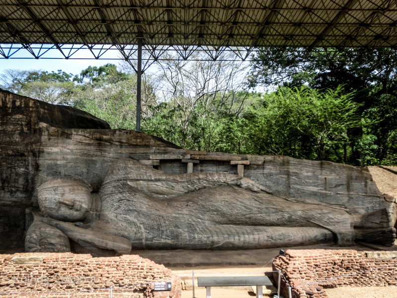 Gal Vihara Sleeping Buddha Polonnaruwa Sri Lanka ooaworld Rolling Coconut Photo Ooaworld