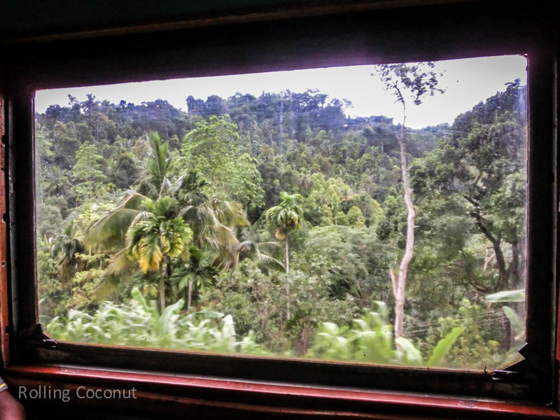 Galle from Kandy Train View Forest ooaworld Rolling Coconut Photo Ooaworld