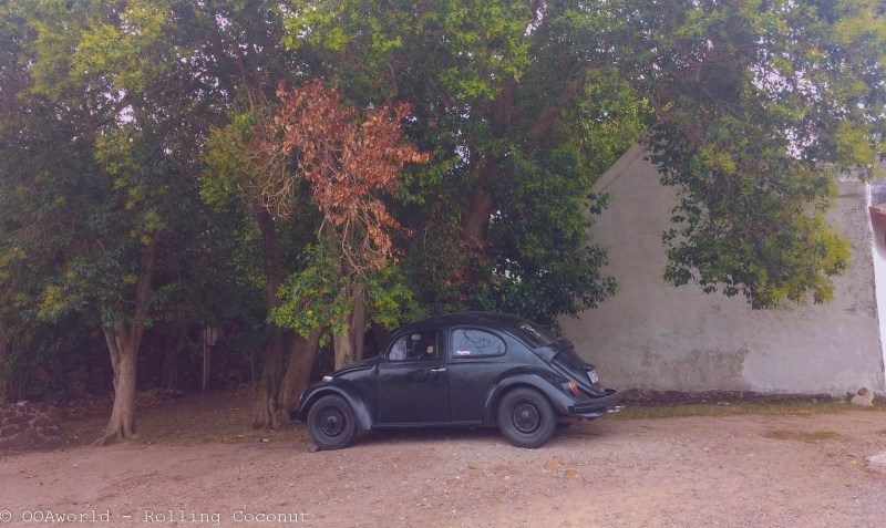 Vintage Black Car Colonia Uruguay Photo OOAworld Rolling Coconut Photo Ooaworld