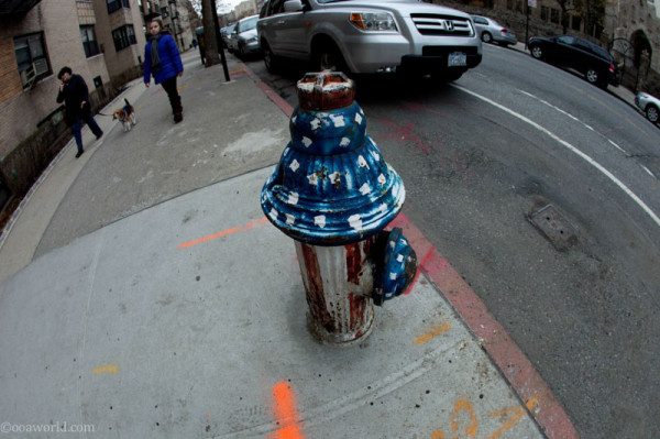 USA Fire Hydrant, NYC photos, New York