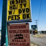 Photos Montana Wyoming Horses Welcome
