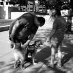 Omaha, Nebraska, playing with dogs