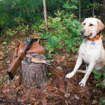 """Derek Witlib of Barrie with his first """"right & left"""" on woodcock, this past Oct. 11. in Simcoe County. """"Whisky flushed them and found them."""""""