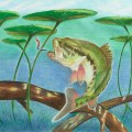 kids' fish art contest - Artwork by Catherine Chen from Toronto, overall winner and winner for the grade 7 to 9 category.
