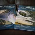 Wild Steelhead