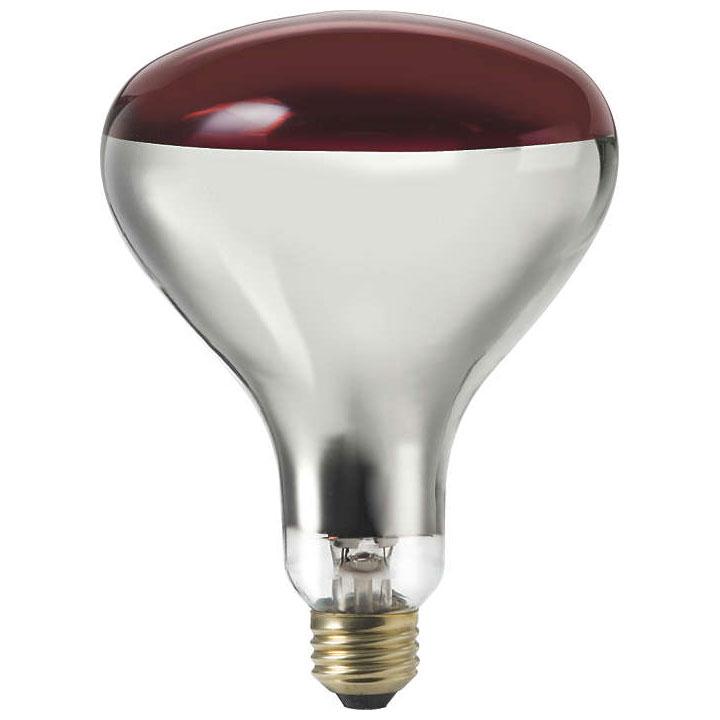 R40 Light Bulb