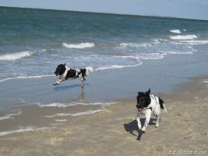 lekker op het strand