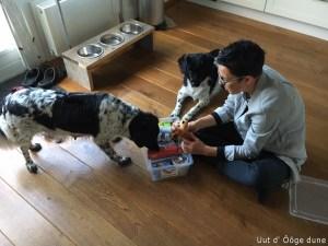 een kraampakket van mijn collegá gekregen. met allemaal lekkers voor de honden maar ook voor mij!