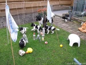 lekker spelen in de tuin