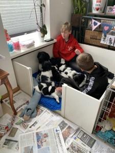 luca met zijn vriendje kwamen op pup bezoek