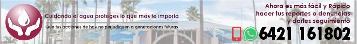 banner_lineaCiudadana