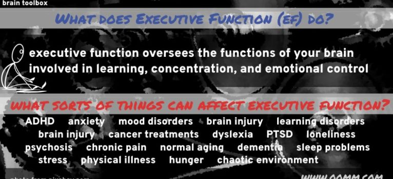 Executive Function Pt 1: What Is It?