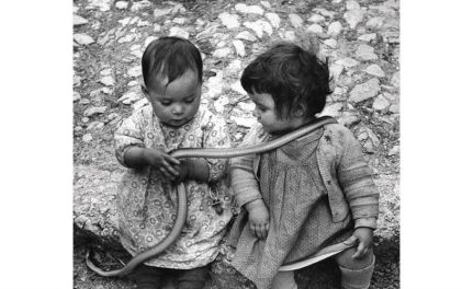 Two children with a snake. By David Seymour, Italy - 1951