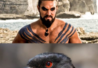 Why Drongo is the New Khal Drogo