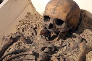 PAY-Vampire-Skeleton