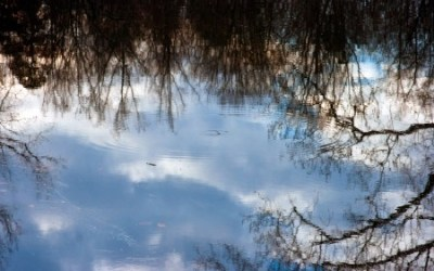 Ripple and reflect