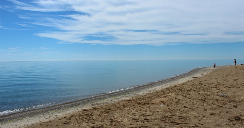 Have You Discovered Illinois Beach State Park Openlands