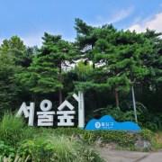오픈나루 서울숲 점심 산책
