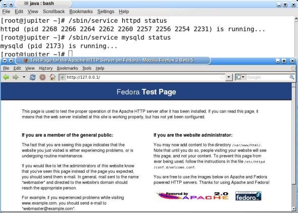 Testing Apache and MySQL services