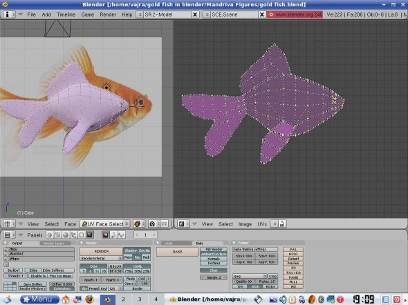 Project From View -- after opening the background goldfish image