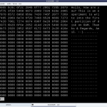 xxd showing the initial data on the first partition (/dev/rb1)