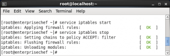 Figure 6 iptables start  stop