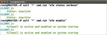 Figure 7 Indicating how we can check the firewall status and enabling it in all the Minions