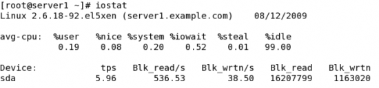Figure 4: A typical iostat output
