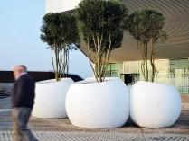 mobilier arbres et plantes