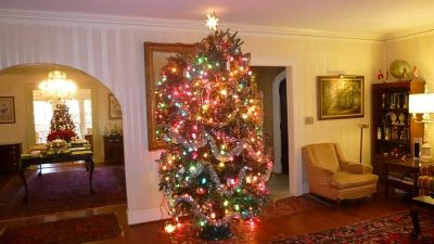2014_Holiday_Party_Snyder_trees
