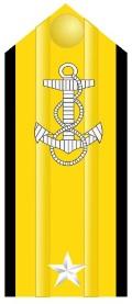 navy seal o-7 insignia