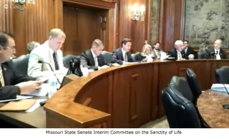 Senate Committe on Sanctity of Human Life