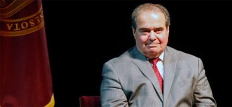 Scalia-main