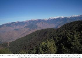 Climate Change Hits Natural Paradise of Kashmir