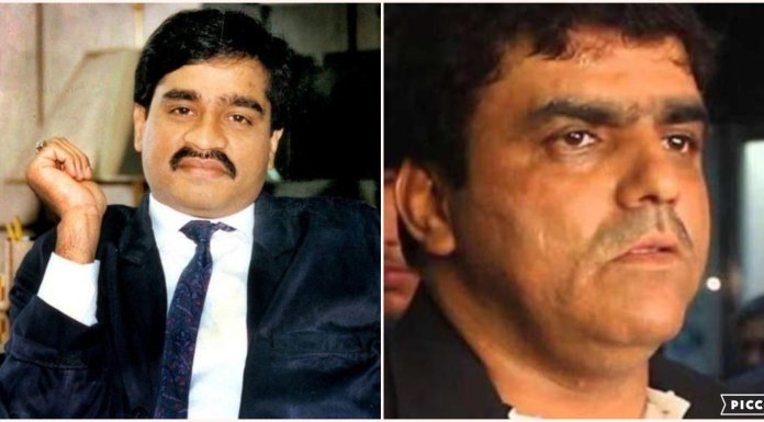 Dawood Ibrahim's nephew Rizwan Kaskar arrested in extortion case