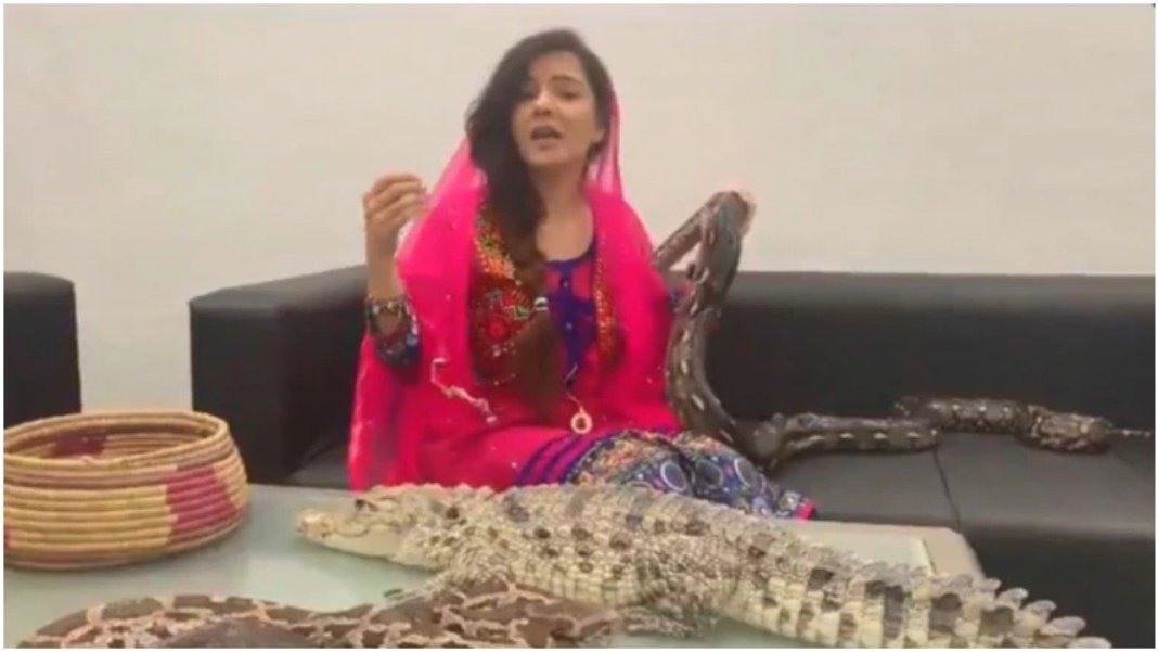 Famous Pak Singer Rabi Pirzada Plays With Snakes