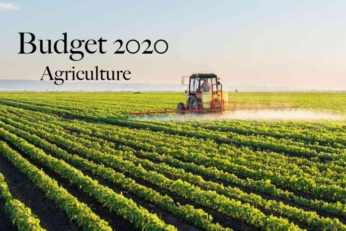 Budget 2020 (Agriculture)