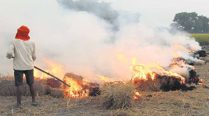 Stubble burning in Punjab begins amidst fears of the commencement of a deadly wave of coronavirus crisis due to aggravated air pollution