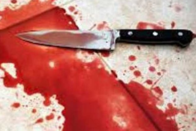 Nagpur: Mohsin Khan stabs alleged girlfriend's grandmother and brother to death