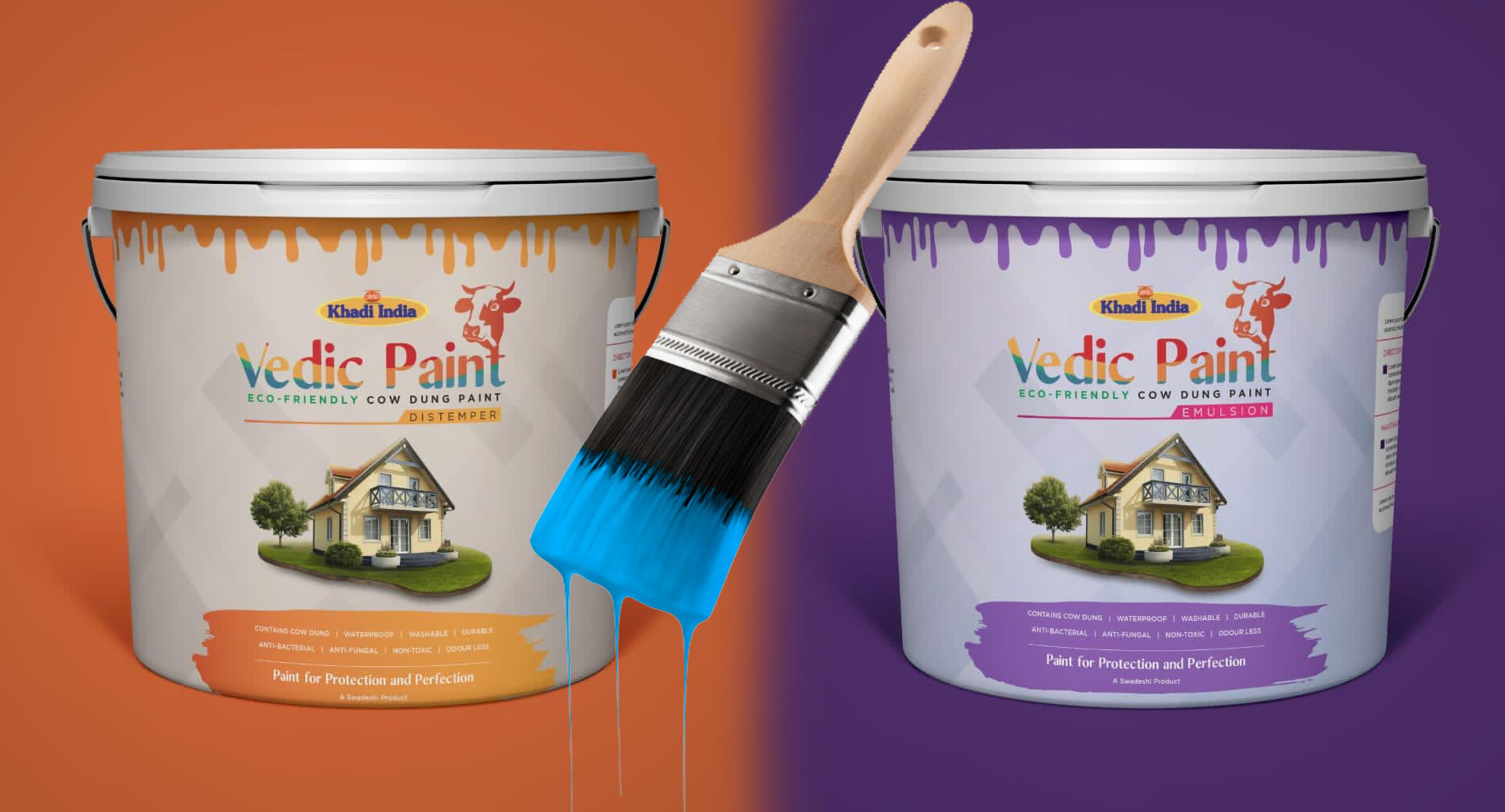 Cow And Uses - Indian Makes Paint Using Cow Dung - Calls Vedic Paint