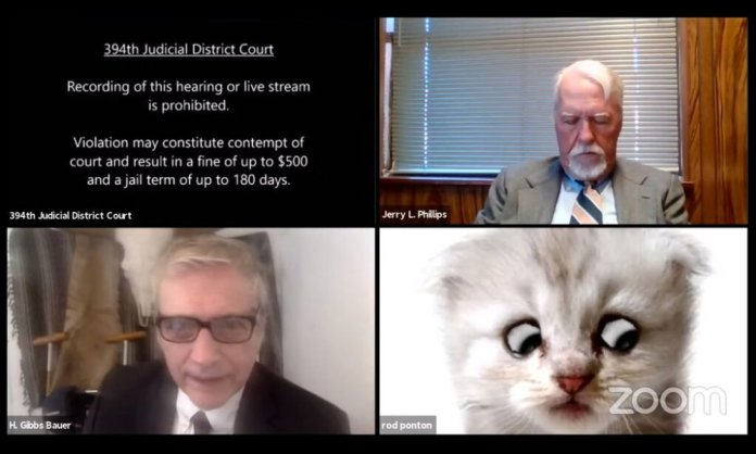 A Texas lawyer was found attending an online court hearing with cat filters on