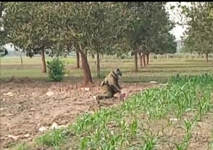 Bengal: Crude bomb discovered in Murshidabad district