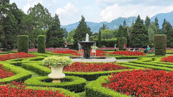 10 Tempat Wisata Taman Bunga di Indonesia