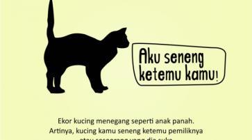 Kenali_Suasana_Hati_Kucing_dari_Gerak_Ekornya_1
