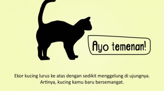 Kenali_Suasana_Hati_Kucing_dari_Gerak_Ekornya_3